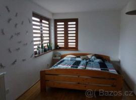 Apartman Alenka, Borová