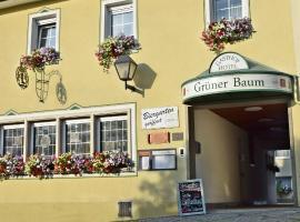 Hotel Grüner Baum, Naila