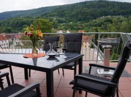Ferienwohnungen Thüringer Wald