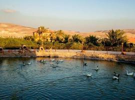 The farm - المزرعة, Ash Shūnah ash Shamālīyah (Umm Qays yakınında)