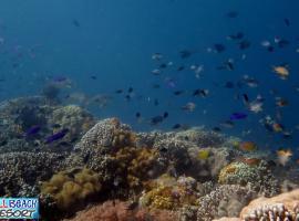 Wellbeach Dive Resort, Dauin