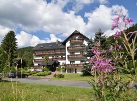 Hotel Thüringer Wald, Ilmenau