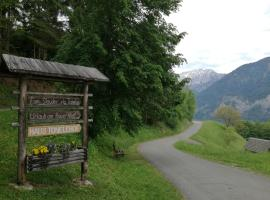 Haus Tonelehof, Dellach im Drautal (Irschen yakınında)
