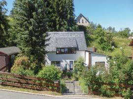 Holiday Home Stützengrün/Hundshübel with Fireplace VIII, Hundshübel (Bärenwalde yakınında)