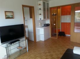 Discover Ljubljana & Slovenija from cosy flat 80m2, Ljubljana