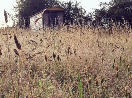 Wellbank Shepherds Hut, Chetwynd (рядом с городом Ньюпорт)