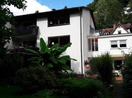 Ferienwohnung Neckarblick, Heidelberg