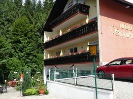 Hotel Sonnleitn, Bodenmais