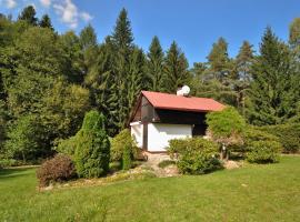 Holiday home in Starobucke Debrne 1307, Starobucké Debrné (Bílá Třemešná yakınında)