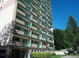 Luxury apartment in center Teplice