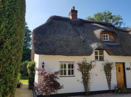 Weir Cottage, Fordingbridge (рядом с городом Damerham)