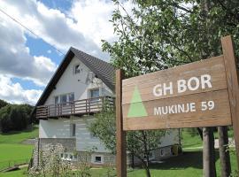 Guesthouse Bor