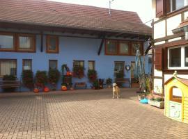 Chambres d'Hôtes Mélodies d'Alsace, Липсхайм (рядом с городом Блаешем)