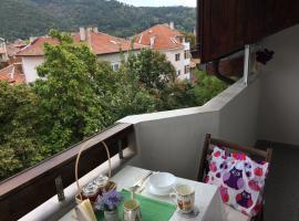 Great View Cozy Apartment, Yukarı Cuma (Kocherinovo yakınında)