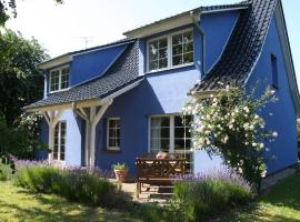 blau - Möni