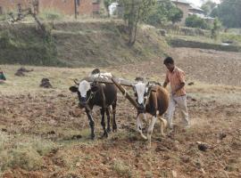 Phoolbari Homestay, Dhulikhel