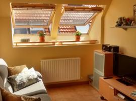 Apartamento cómodo y luminoso en Isaba, Isaba
