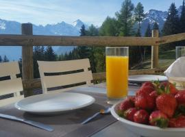 """Chalet le Dahlia - 4 Vallees"""