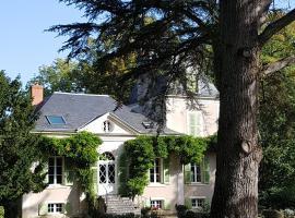 Château de La Villette, Ardentes (рядом с городом Meunet-Planches)