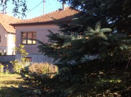la maison de Lucie, Surbourg
