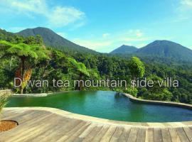 D'wan Tea Mountain Side