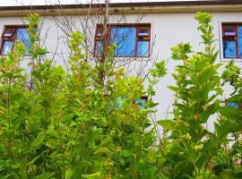 Kálfafellsstadur Bed & Breakfast, Kálfafellsstaður