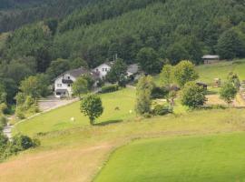 Dümpelhof Ferienwohnungen, Olsberg (Wulmeringhausen yakınında)