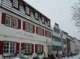 Hotel Mainblick Garni, Marktheidenfeld (Karbach yakınında)