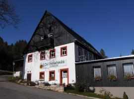 Die Oberlochmühle PENSION, Deutschneudorf (Brandov yakınında)