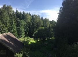 Grünlasmühle, Brand (Langentheilen yakınında)