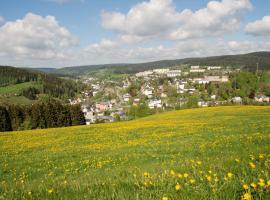Ferienwohnung Körnerberg, Klingenthal