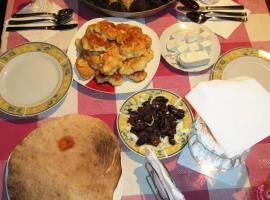 Backpacker Hostel, Elbasan (Arës yakınında)
