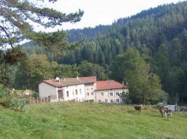 Moulin dans les bois, Saint-Georges-Lagricol (рядом с городом Usson-en-Forez)