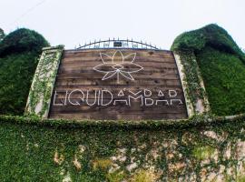 Liquidambar Hotel, Сарабанда (рядом с городом Валье-де-Анхелес)