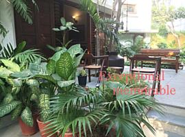 The Boutique Home Stay - Utelia House No.9