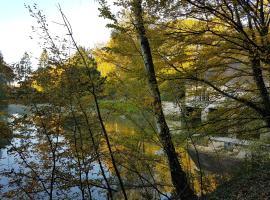 Nid dans la forêt, Saint-Jean-aux-Bois (рядом с городом Morienval)