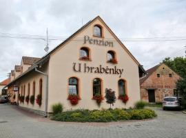 Penzion U Hraběnky, Petrovice (Těchov yakınında)