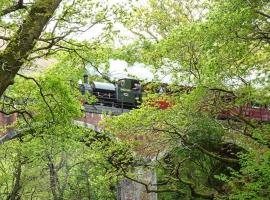 Dolgoch Falls, Abergynolwyn
