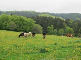 Haus-Dorfidyll, Weidelbach (Reichenbach yakınında)