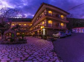 Hotel Steni