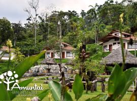 Amuntai Rainforest Lodge, Palora