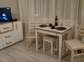 Pallasti apartment