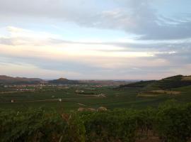 B&B Corte Galo, Tregnago (Mezzane di Sotto yakınında)