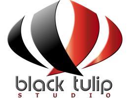 Black Tulip Studio, Leida