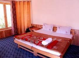A O Guest House & Home Stay, Nubra (рядом с городом Liekzan)