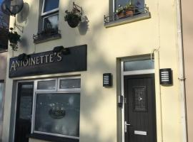 The Cosy Townhouse, Omagh