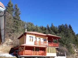 Villa Chaushevi, Pletena