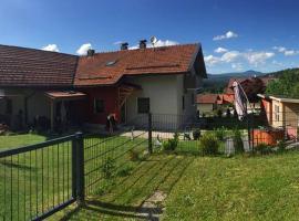 Ferienhaus Linn, Hohenau (Neuschönau yakınında)