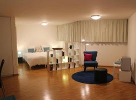 A Casa Fina- a modern room close to Basel