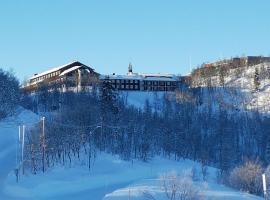Skinnarbu Nasjonalparkhotell, Rjukan